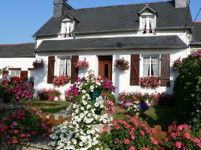 Location de vacances Le Grand Hortensia   PLEYBEN