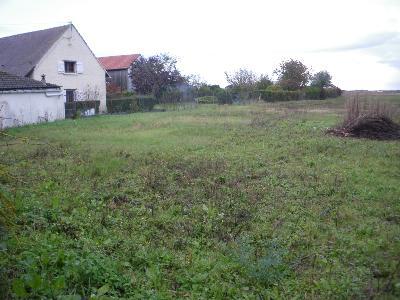 photo no. 1