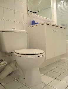 Appartement 1 chambre -  31 m² au sol