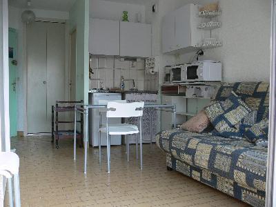 Studio meublé ENTIEREMENT REFAIT A NEUF POUR  2013 PARKING PRIVE Sécurisé