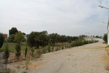 A vendre terrain à Hammamet sud - Tunisie