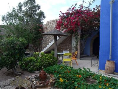 Maison Individuelle Avec Jardin Fleuri A Essaouira