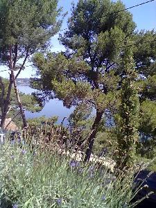 Provence entre méditerranée et Camargue vue magnifique sur étang