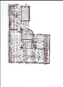 BOUTIQUE  idéal pour  show-room   St Ambroise   126 m2