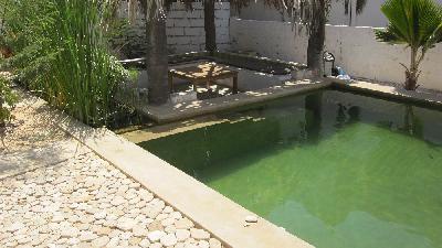Plage à 20m, piscine naturelle, vue panoramique océan