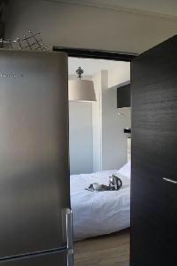 location appartement 2 pi ces 34 m2 nanterre 92000. Black Bedroom Furniture Sets. Home Design Ideas