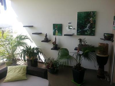 Appartement T2 à Saint-Gilles les Bains?