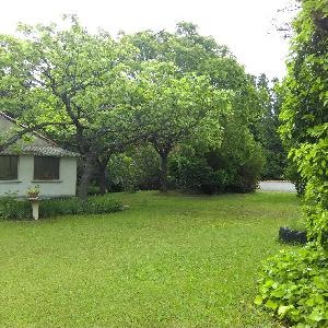 Maison 87 m2 Terrain 10480 Bâtiment annexce 80 m2