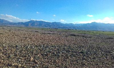 Excellent terrain agricole tité de 40 hectares