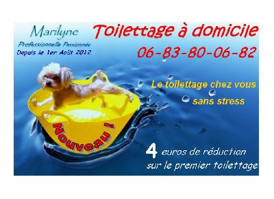 TOILETTAGE A DOMICILE SANS STRESS