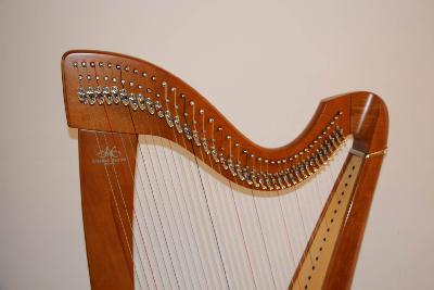 Petite annonce Instruments à cordes - photo no. 4