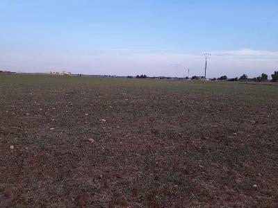 Vente terrain 18ha titré et conservé zone industrielle région casablanca à 800dh
