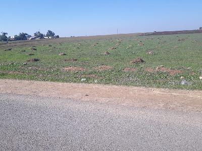 Vente terrain 18ha Casablanca zone indistrielle au prix de 800dhs / m² négociabl