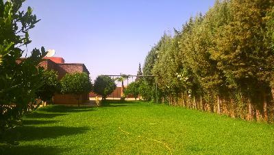 photo no. 4